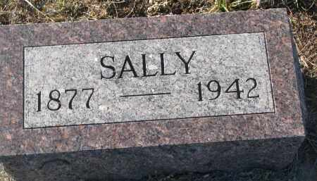 BROWN, SALLY - Stanton County, Nebraska | SALLY BROWN - Nebraska Gravestone Photos
