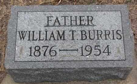 BURRIS, WILLIAM T. - Stanton County, Nebraska | WILLIAM T. BURRIS - Nebraska Gravestone Photos