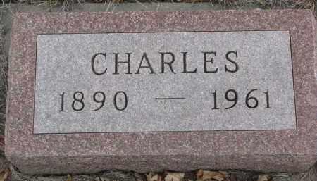 BUSCH, CHARLES - Stanton County, Nebraska | CHARLES BUSCH - Nebraska Gravestone Photos
