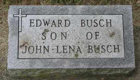 BUSCH, EDWARD - Stanton County, Nebraska   EDWARD BUSCH - Nebraska Gravestone Photos