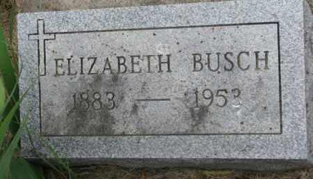 BUSCH, ELIZABETH - Stanton County, Nebraska   ELIZABETH BUSCH - Nebraska Gravestone Photos