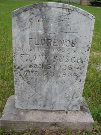 BUSCH, FLORENCE - Stanton County, Nebraska | FLORENCE BUSCH - Nebraska Gravestone Photos