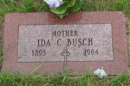 BUSCH, IDA C. - Stanton County, Nebraska | IDA C. BUSCH - Nebraska Gravestone Photos