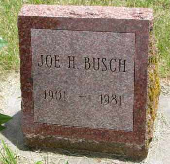 BUSCH, JOE H. - Stanton County, Nebraska | JOE H. BUSCH - Nebraska Gravestone Photos