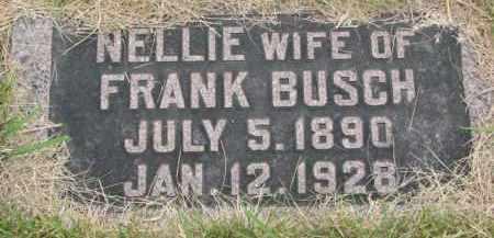 BUSCH, NELLIE - Stanton County, Nebraska | NELLIE BUSCH - Nebraska Gravestone Photos