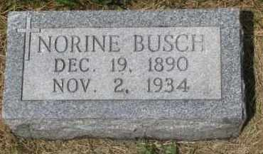 BUSCH, NORINE - Stanton County, Nebraska   NORINE BUSCH - Nebraska Gravestone Photos