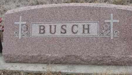 BUSCH, PLOT STONE - Stanton County, Nebraska | PLOT STONE BUSCH - Nebraska Gravestone Photos