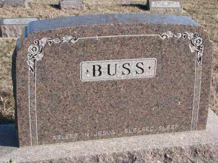 BUSS, PLOT STONE - Stanton County, Nebraska | PLOT STONE BUSS - Nebraska Gravestone Photos