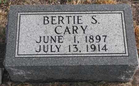 CARY, BERTIE S. - Stanton County, Nebraska | BERTIE S. CARY - Nebraska Gravestone Photos