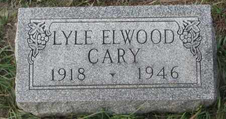 CARY, LYLE ELWOOD - Stanton County, Nebraska | LYLE ELWOOD CARY - Nebraska Gravestone Photos