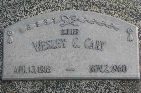 CARY, WESLEY C. - Stanton County, Nebraska   WESLEY C. CARY - Nebraska Gravestone Photos