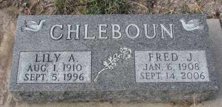 CHLEBOUN, LILY A. - Stanton County, Nebraska | LILY A. CHLEBOUN - Nebraska Gravestone Photos