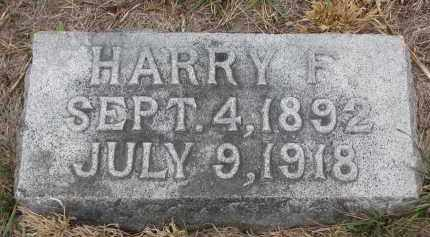 COLEY, HARRY F. - Stanton County, Nebraska | HARRY F. COLEY - Nebraska Gravestone Photos