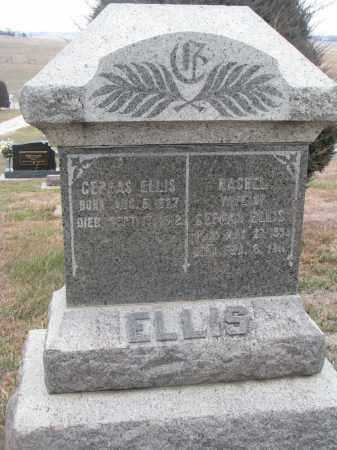 ELLIS, RACHEL - Stanton County, Nebraska | RACHEL ELLIS - Nebraska Gravestone Photos
