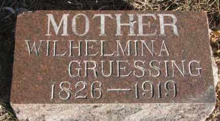 GRUESSING, WILHELMINA - Stanton County, Nebraska   WILHELMINA GRUESSING - Nebraska Gravestone Photos