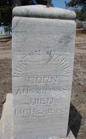 HAIDLE, BURTON - Stanton County, Nebraska   BURTON HAIDLE - Nebraska Gravestone Photos
