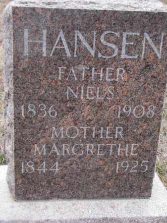 HANSEN, NIELS - Stanton County, Nebraska | NIELS HANSEN - Nebraska Gravestone Photos