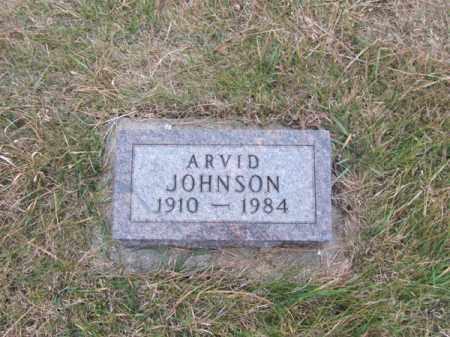 JOHNSON, ARVID - Stanton County, Nebraska | ARVID JOHNSON - Nebraska Gravestone Photos