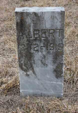 JOHNSON, ALBERT - Stanton County, Nebraska   ALBERT JOHNSON - Nebraska Gravestone Photos