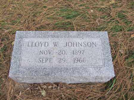 JOHNSON, LLOYD W - Stanton County, Nebraska | LLOYD W JOHNSON - Nebraska Gravestone Photos
