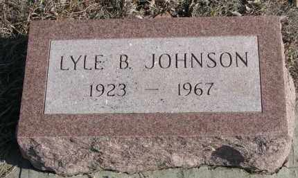 JOHNSON, LYLE B. - Stanton County, Nebraska | LYLE B. JOHNSON - Nebraska Gravestone Photos