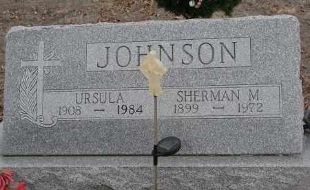JOHNSON, SHERMAN M. - Stanton County, Nebraska | SHERMAN M. JOHNSON - Nebraska Gravestone Photos