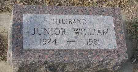 KOEPKE, JUNIOR WILLIAM - Stanton County, Nebraska | JUNIOR WILLIAM KOEPKE - Nebraska Gravestone Photos