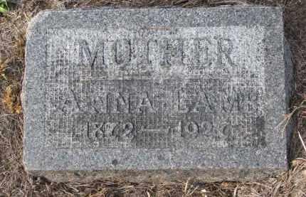 LAMB, ANNA - Stanton County, Nebraska | ANNA LAMB - Nebraska Gravestone Photos