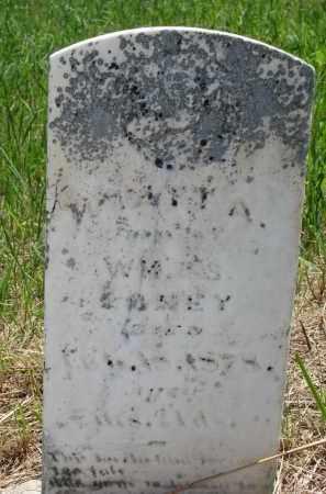 LANEY ?, WYATT A. - Stanton County, Nebraska   WYATT A. LANEY ? - Nebraska Gravestone Photos