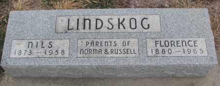 LINDSKOG, NILS - Stanton County, Nebraska | NILS LINDSKOG - Nebraska Gravestone Photos
