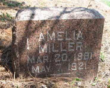 MILLER, AMELIA - Stanton County, Nebraska | AMELIA MILLER - Nebraska Gravestone Photos