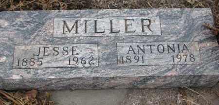 MILLER, JESSE - Stanton County, Nebraska | JESSE MILLER - Nebraska Gravestone Photos