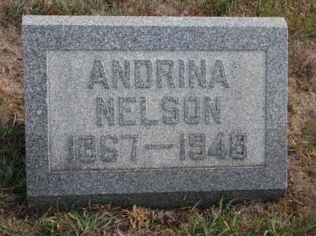 NELSON, ANDRINA - Stanton County, Nebraska | ANDRINA NELSON - Nebraska Gravestone Photos