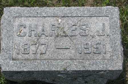 NELSON, CHARLES J. - Stanton County, Nebraska | CHARLES J. NELSON - Nebraska Gravestone Photos