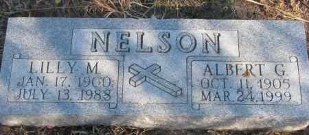NELSON, LILLY M. - Stanton County, Nebraska | LILLY M. NELSON - Nebraska Gravestone Photos