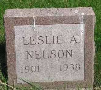 NELSON, LESLIE A. - Stanton County, Nebraska | LESLIE A. NELSON - Nebraska Gravestone Photos