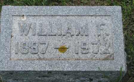 NELSON, WILLIAM F. - Stanton County, Nebraska | WILLIAM F. NELSON - Nebraska Gravestone Photos