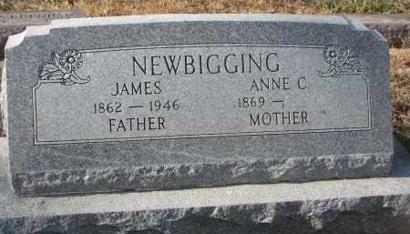 NEWBIGGING, ANNE C. - Stanton County, Nebraska | ANNE C. NEWBIGGING - Nebraska Gravestone Photos