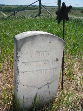 NYE, CORNELIUS (SGT) - Stanton County, Nebraska   CORNELIUS (SGT) NYE - Nebraska Gravestone Photos