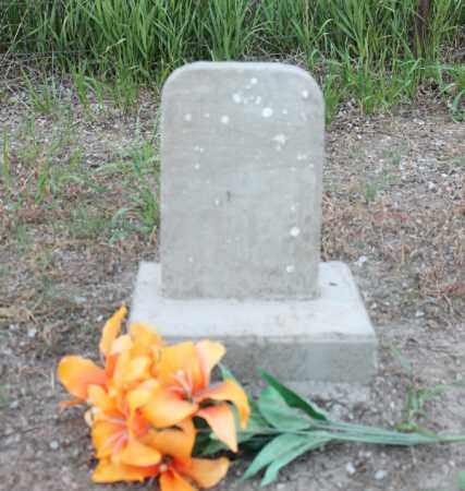 NYE, MARY - Stanton County, Nebraska | MARY NYE - Nebraska Gravestone Photos