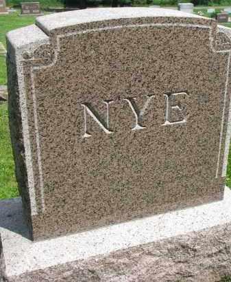 NYE, PLOT STONE - Stanton County, Nebraska | PLOT STONE NYE - Nebraska Gravestone Photos
