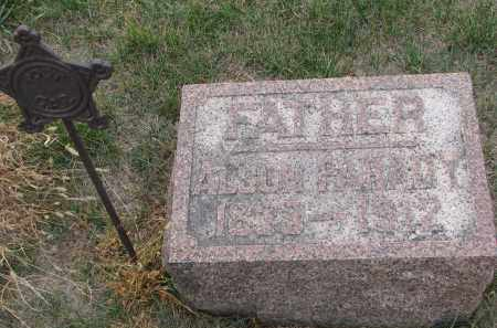 PARADY, ALSON - Stanton County, Nebraska | ALSON PARADY - Nebraska Gravestone Photos