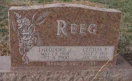 REEG, CECILIA R. - Stanton County, Nebraska | CECILIA R. REEG - Nebraska Gravestone Photos