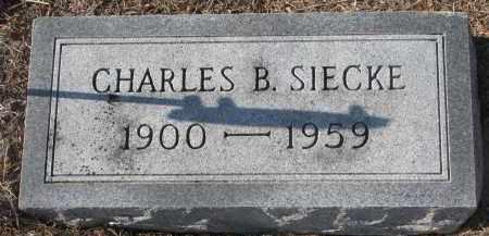 SIECKE, CHARLES B. - Stanton County, Nebraska | CHARLES B. SIECKE - Nebraska Gravestone Photos
