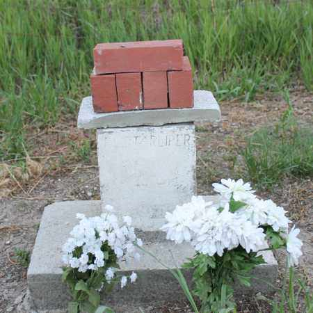 STARLIPER, FAMILY PLOT - Stanton County, Nebraska   FAMILY PLOT STARLIPER - Nebraska Gravestone Photos