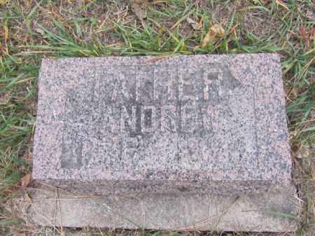SVENSON, ANDREW - Stanton County, Nebraska | ANDREW SVENSON - Nebraska Gravestone Photos
