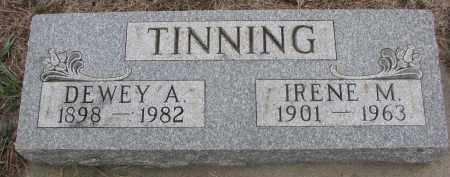 TINNING, IRENE M. - Stanton County, Nebraska | IRENE M. TINNING - Nebraska Gravestone Photos