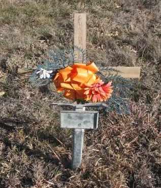 UNKNOWN, GUNNAR - Stanton County, Nebraska | GUNNAR UNKNOWN - Nebraska Gravestone Photos