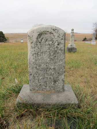 UNKNOWN, HENRY - Stanton County, Nebraska   HENRY UNKNOWN - Nebraska Gravestone Photos