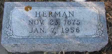 WEICHENTHAL, HERMAN - Stanton County, Nebraska | HERMAN WEICHENTHAL - Nebraska Gravestone Photos